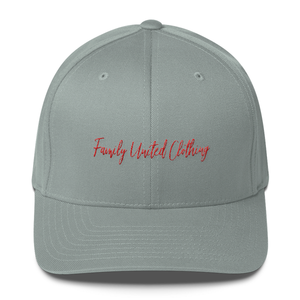The Family Signature FlexFit Hat Grey