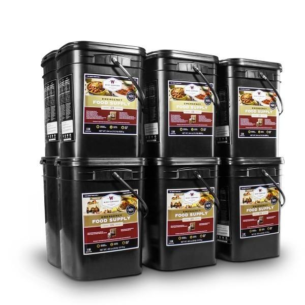Long term storage 1440 servings of Wise emergency food with 25 year shelf life packed in nitrogen-flushed pouch.