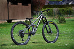 "Transition Sentinel Carbon custom ""Ihre graue Emminenz"" in M"