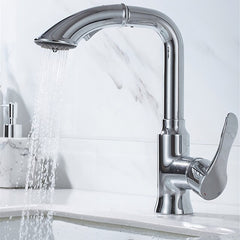 DQOK - Chrome Pull Out Vanity Faucet