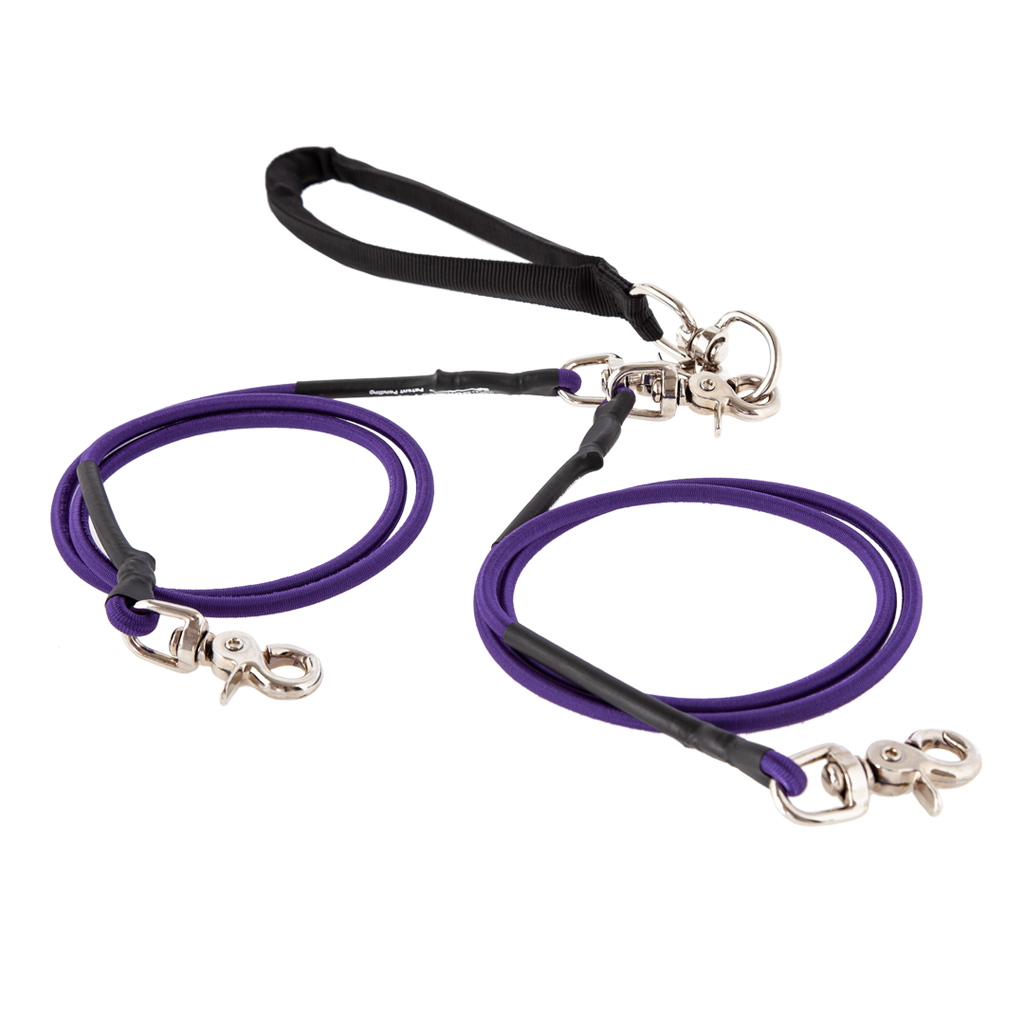 Coupled Bungee Leash (For Bonded Pairs)