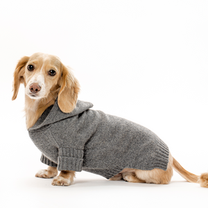 Doxie Cashmere Hoodie