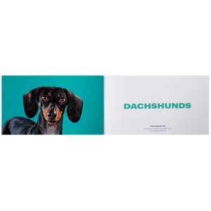 A Book for Dachshund People