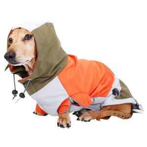 Long Dog Windbreaker