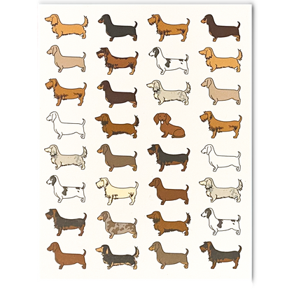 Doxie Greeting Card Set