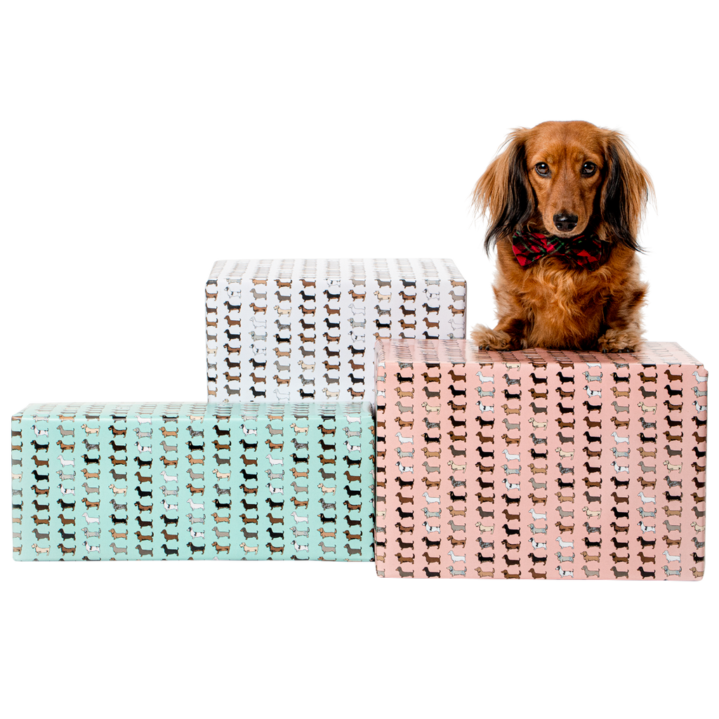 Double-sided Dachshund Wrapping Paper