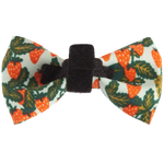 Strawberry Fields Bowtie