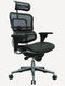 Ergohuman High-Back Mesh Managers Chair