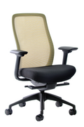 Vera Mesh Back Ergonomic Chair