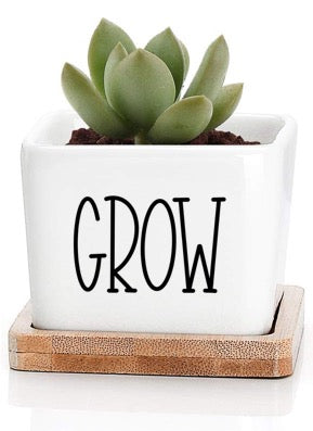 Small Square Plant Pot - Grow