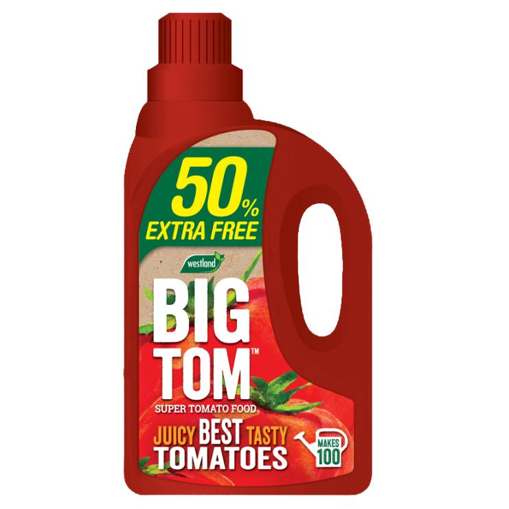 Westland Big Tom Super Tomato Food 1.25L plus 50% Extra Free