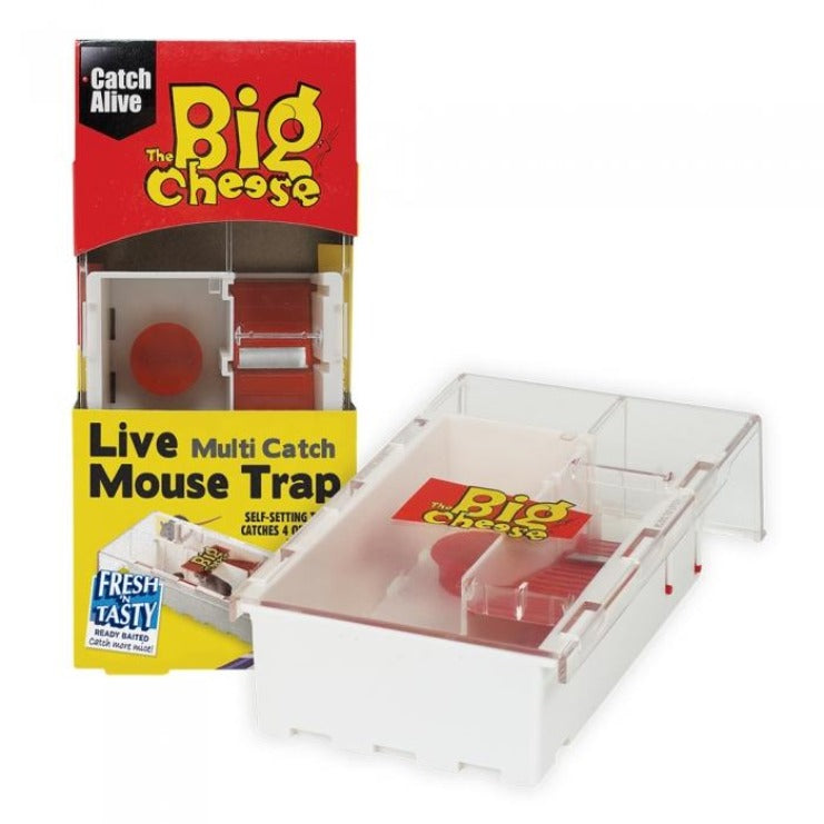 The Big Cheese Mouse Small Multi-Live Catch