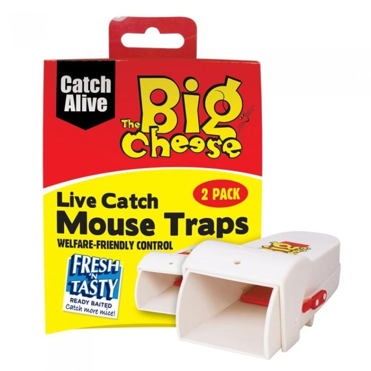 The Big Cheese Mouse Live Catch 2 pack