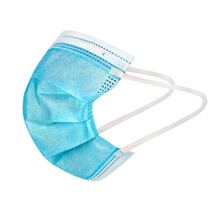 Load image into Gallery viewer, Filter Mask 3-Ply Disposable FDA Approved Earloop Face Mask(For Box/50pcs)