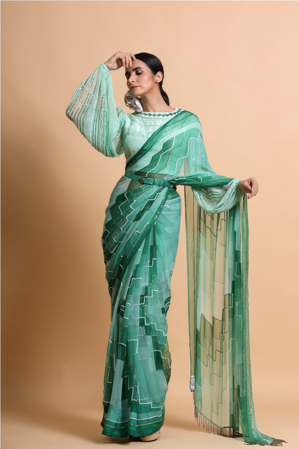 Green Embroidered Chiffon Saree with balloon sleeve blouse