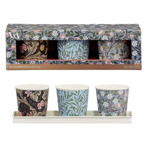 V&A Set of 3 Herb Plant Pots with Tray
