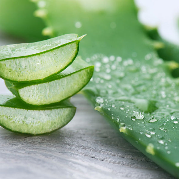 Aloe Vera for Radiation Relief, Skin Recovery Cream Ingredients