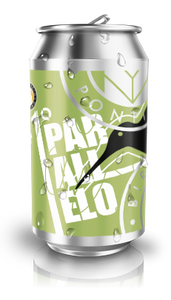 41° PARALLELO - Farmhouse Ale (12 lattine 0,33cl.)