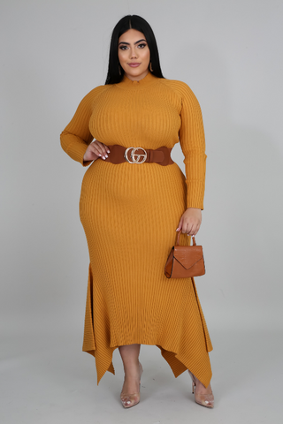 Kissed By a Mustard Seed Dress - Plus