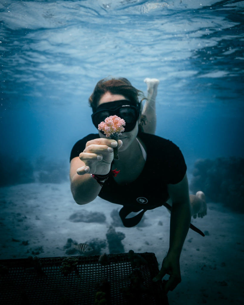 coral protection action