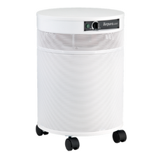 Load image into Gallery viewer, AIRPURA R600 The Everyday clean Air Purifier
