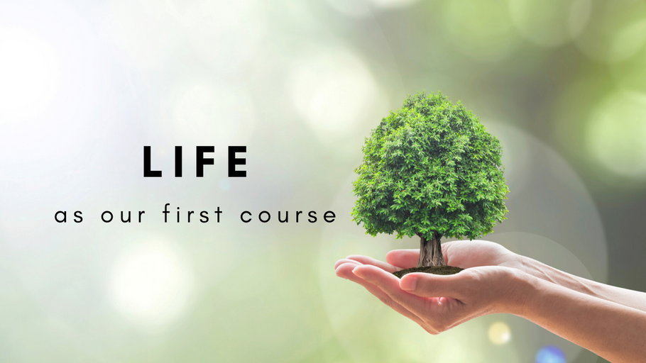 Life As Our First Course