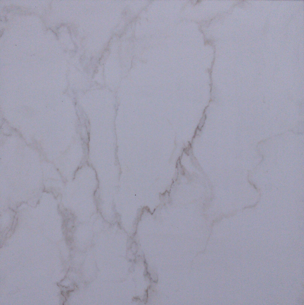 BE14F Carrara Statuary 20x20