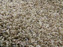 Load image into Gallery viewer, Standoff Residential Plush Carpet Sandalwood - CAR1043