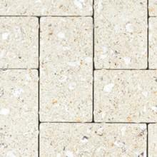 Oceanside Cream PaverOceanside Cream Paver