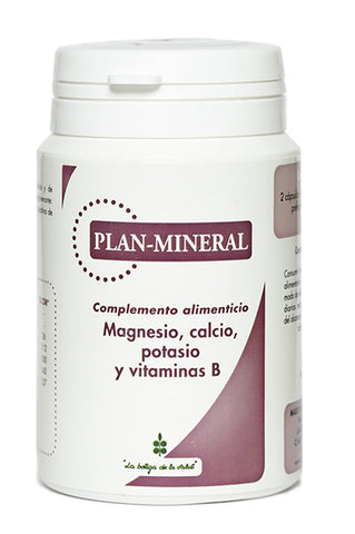 Plan Mineral