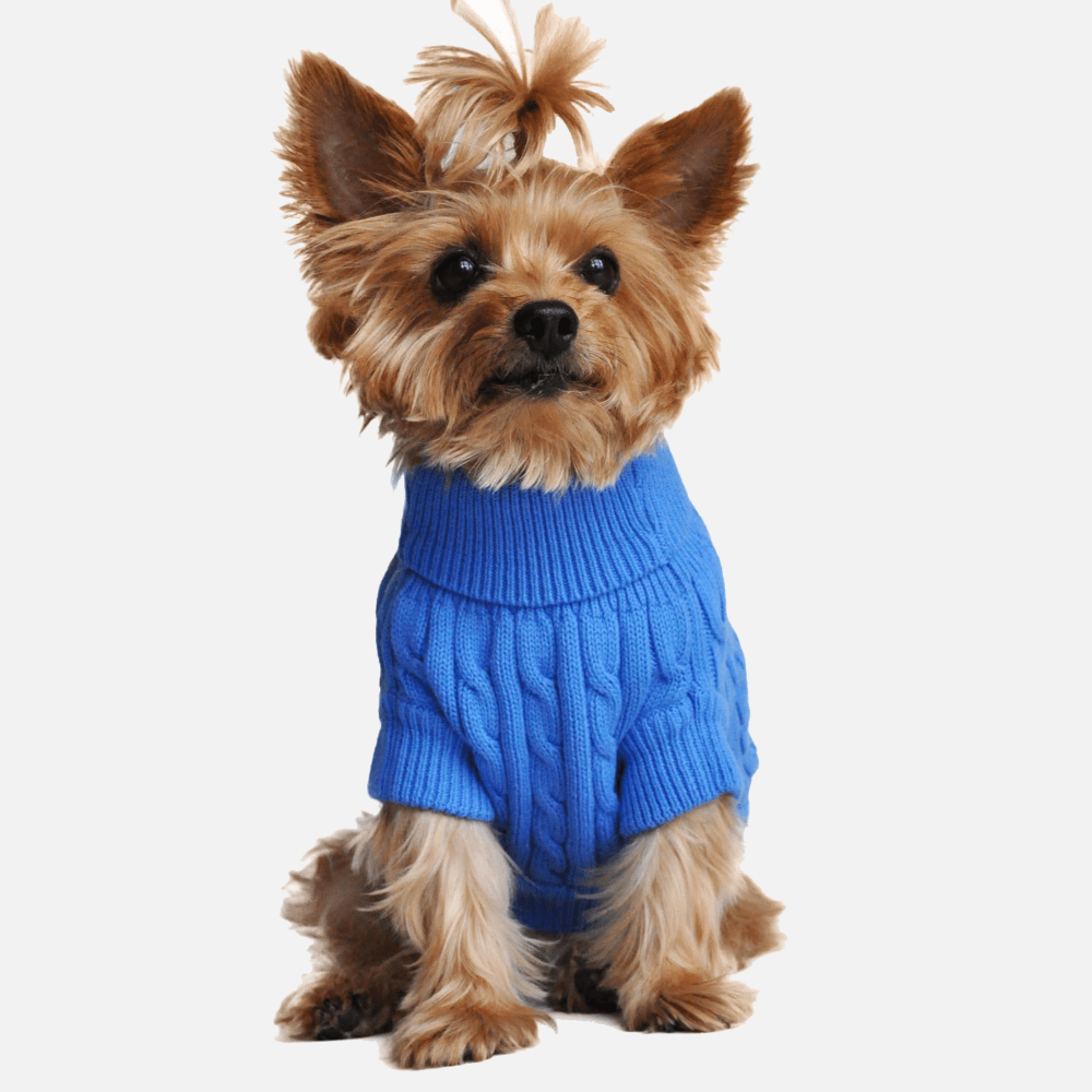 Riverside Blue Knitted Sweater for Dogs | Milan Pets Dog Clothing Wear Sweater