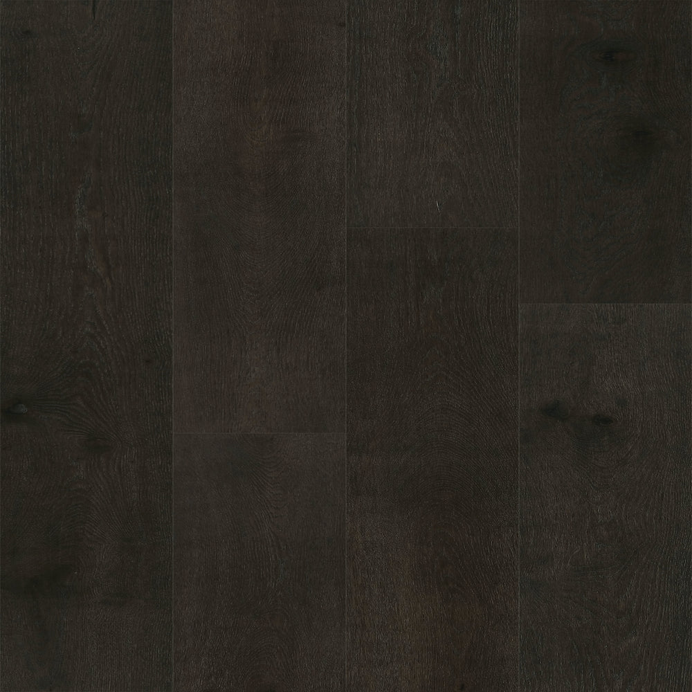 European Oak - Antlia Sample*