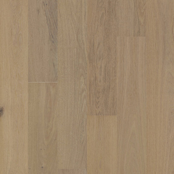 European Oak - Breath Of Winter Sample