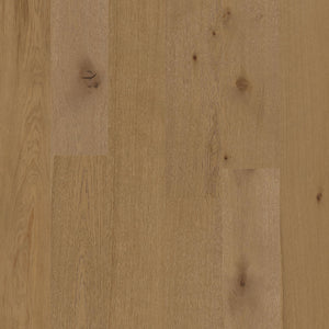 European Oak - Desert Ark Sample*