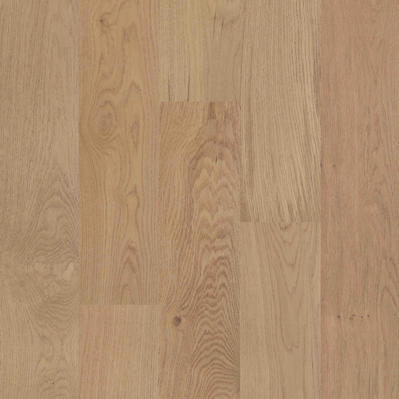 European Oak - Stockholm Sample