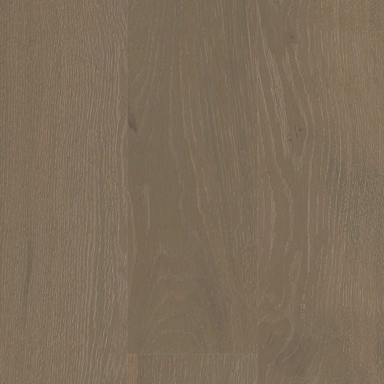 European Oak - Painter's White Sample