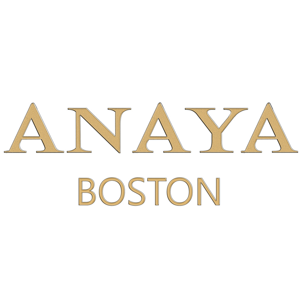 Anaya Boston Handmade Leather Leoperd Print Tote - anayabags