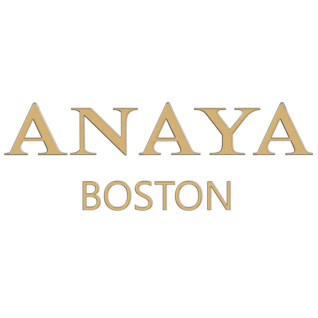 Anaya Boston Handmade Elementary Leather Bag - anayabags
