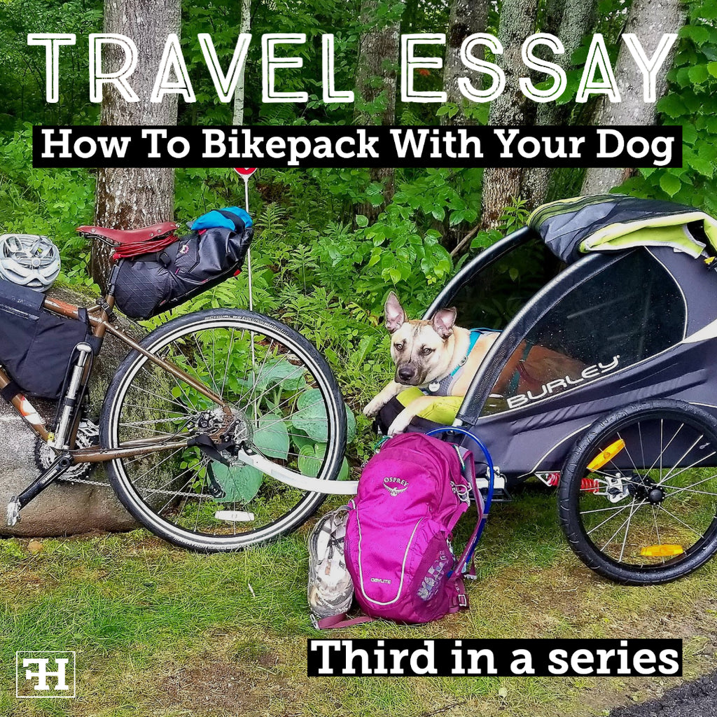 How To Bikepack With Your Dog