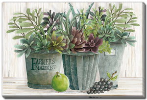 Farmers Market Pots of Succulents Print **Pick Up Only**
