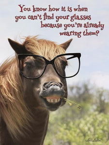 Horse wearing huge glasses- Birthday Card