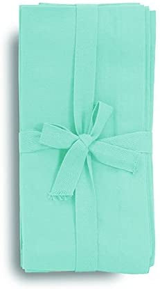 Aqua Oversized Napkins Set of 4