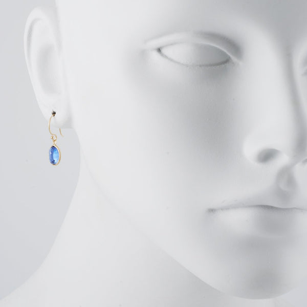 Margaret Solow - Kyanite Earrings