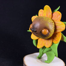 Load image into Gallery viewer, Sunflower Bebe- Looshers