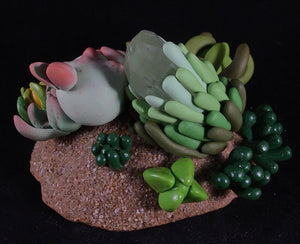 Earthly Succulent Crystal Guardian Pup- Surps