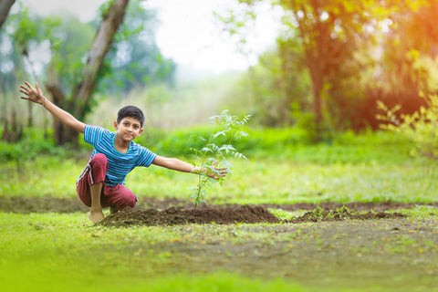 Kid Planting a tree-Luma World