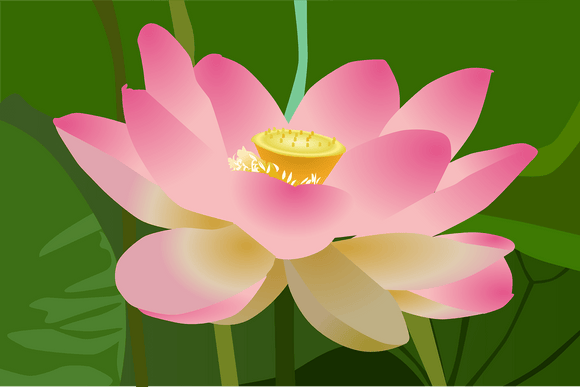 The Properties Of Lotus Leaf Extract In The Reduction Of Obesity - Authentic Option