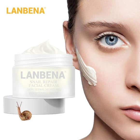 Skin Firming Moisturizing Day Cream -Snail  moisturizing  firming  Extract  cream  concealer  brightens  blemish  beautiful  anti wrinkle  aging  acne spot remover  acne remover  acne - Authentic Option