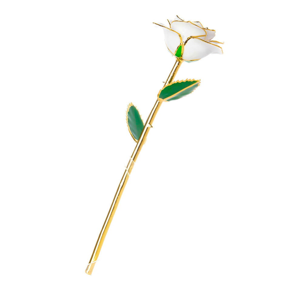 24K Gold Dipped Rose – White
