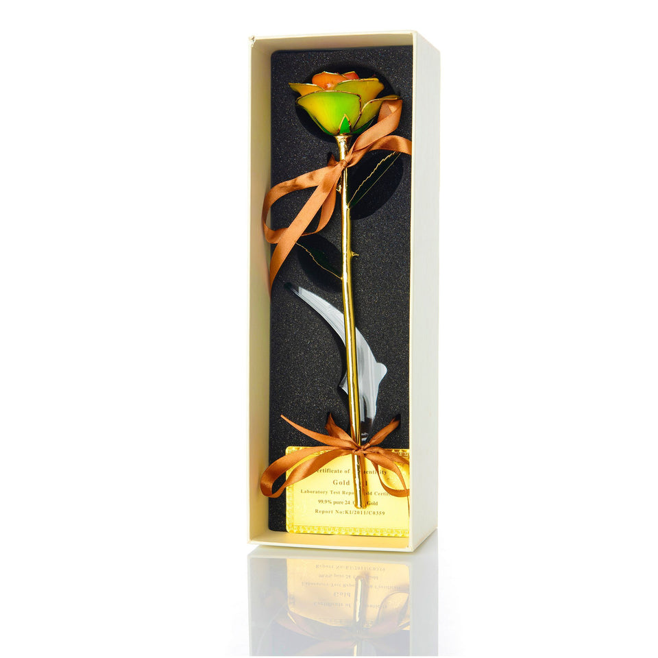 24K Gold Dipped Rose – Rainbow